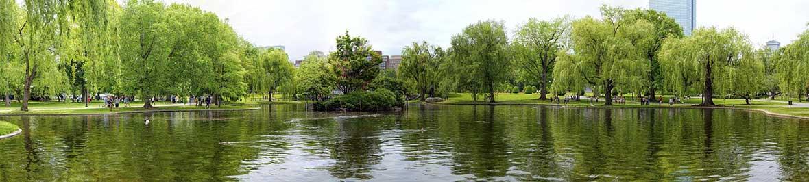 Boston Common lake